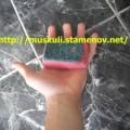 гъби-300x225