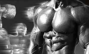Фитнес програма - 1 мускулна група на ден