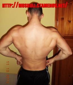 Кристиян Стаменов - гръб
