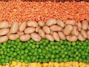 beans-bob-lesta-grah