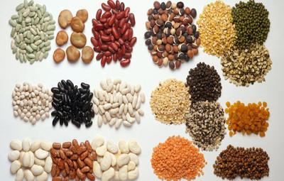Бобови и зърнени култури