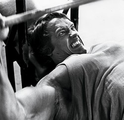 Arnold- benching